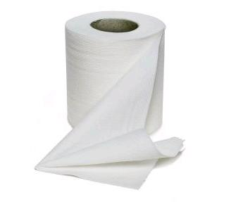 Toilet Tissue Saves Paper Mill and 176 Jobs