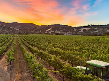 ADA Restroom Trailers for a Sustainable Vineyard in Clearlake, California
